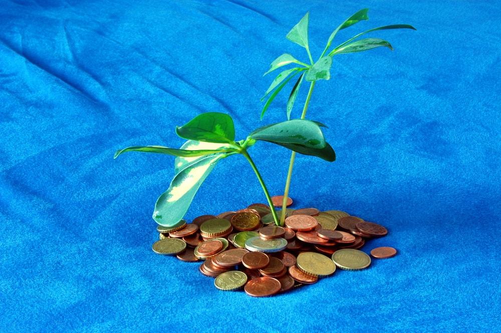 サンリオ、11億円の追徴課税 「タックスヘイブン対策税制」の対象に