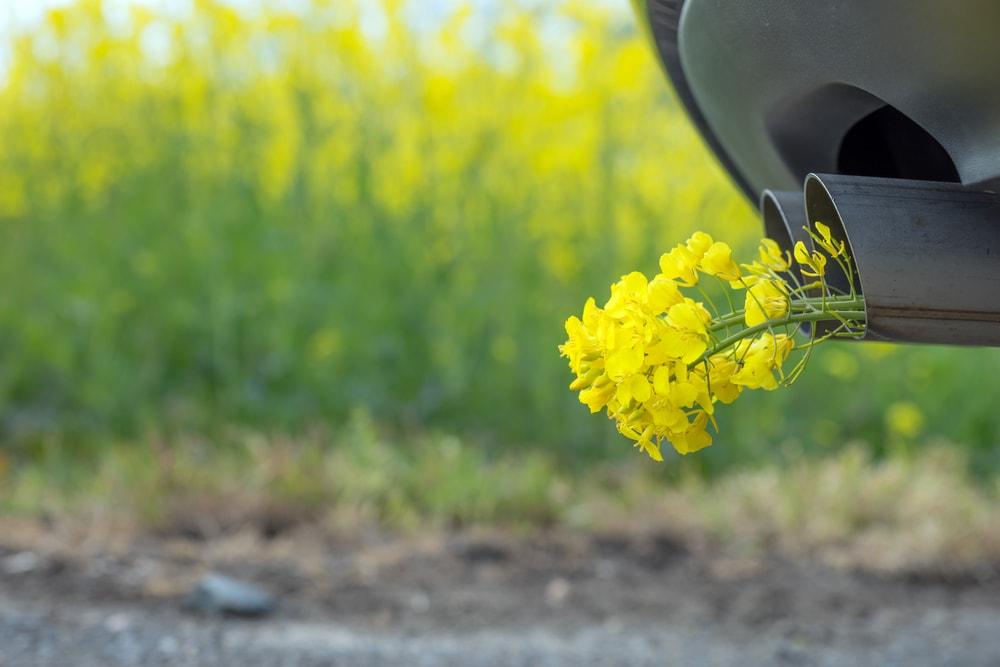 バイオ燃料販売会社を強制調査、粉飾決算の疑い